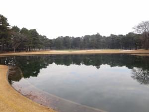 池は巨大だけど、グリーン手前のバンカーの方が曲者~